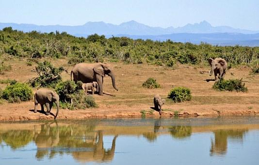 voyage en brousse en afrique du sud